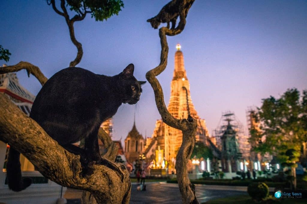 Wat Arun, Świątynia Świtu