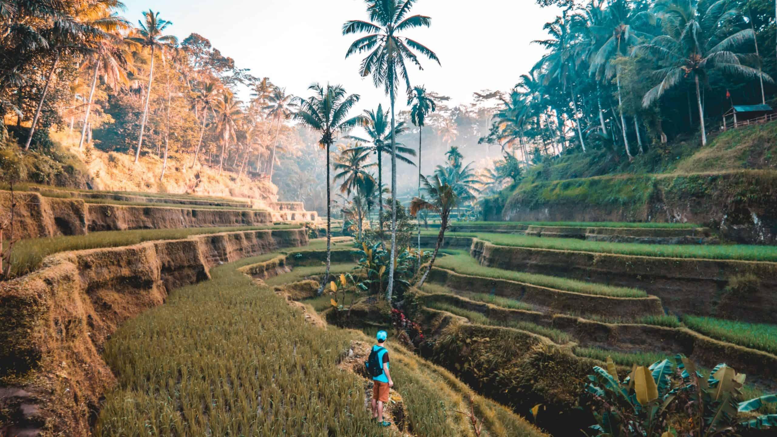 Singapur - miasto Lwa, mistyczne Bali i wyspy Gili
